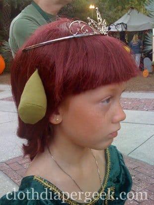 princess fiona costume