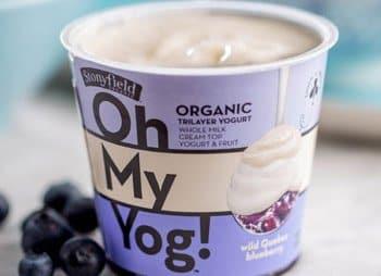 oh my yog, stonyfield