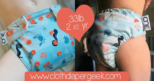 grovia one cloth diaper