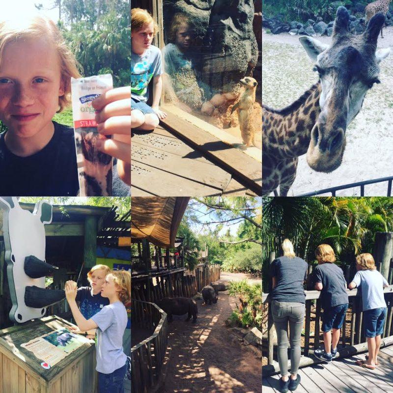 stonyfield, aza, brevard zoo