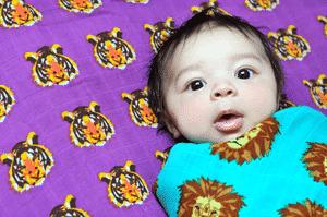 oliver kit muslin swaddle blankets
